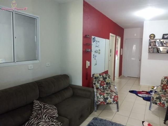 Casa, Bela Vista, Palhoça-SC - Foto 4