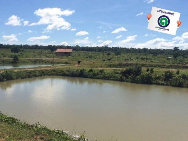 Fazenda com piscicultura ativa, próximo de nossa senhora do livramento