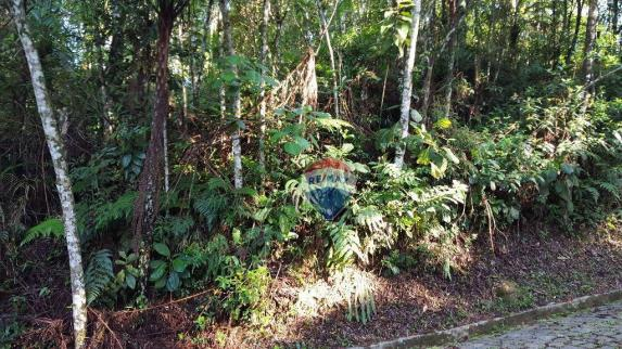Terreno residencial à venda, Carlos Guinle, Teresópolis - TE0017. - Foto 4