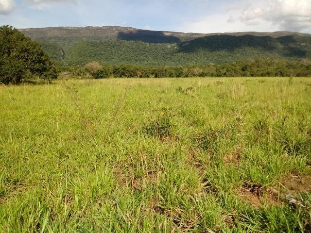Fazenda de 784,77 hectares ha 140 km de Cuiabá em Rosário Oeste MT - Foto 16