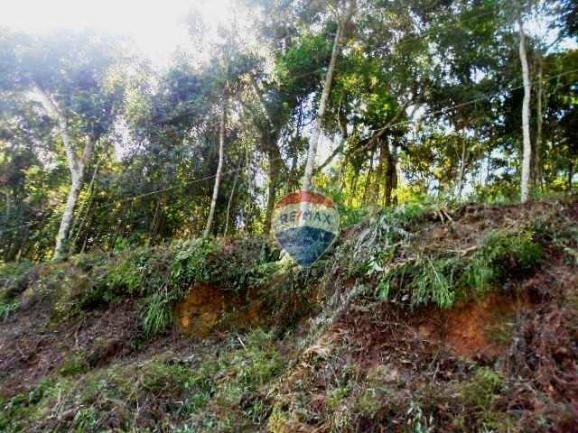 Terreno residencial à venda, Fazenda Boa Fé, Teresópolis. - Foto 10