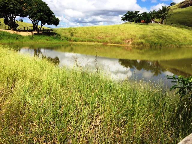Fazenda 1001 hectares próximo a Teófilo Otoni/MG - Foto 3