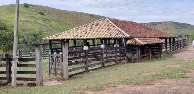 Fazenda 12 alqueires em Governador Valadares/MG - Foto 16