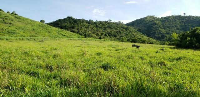 Fazenda 20 alqueires em São Jose Safira / MG - Foto 9