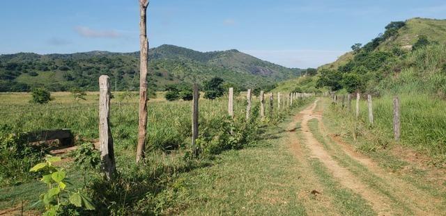 Fazenda 20 alqueires em São Jose Safira / MG - Foto 14