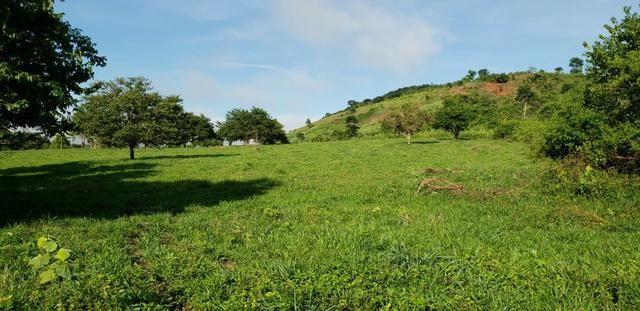 Fazenda 20 alqueires em São Jose Safira / MG - Foto 7