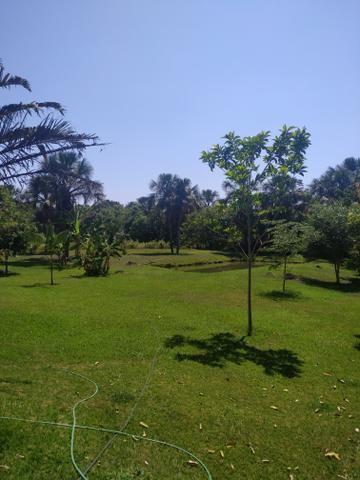Chácara em Aragoiania venda ou aluguel - Foto 2