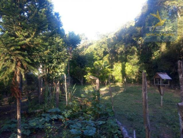 CH0386 - Chácara à venda, 6050 m² por R$ 130.000 - Zona Rural - Quitandinha/PR - Foto 14