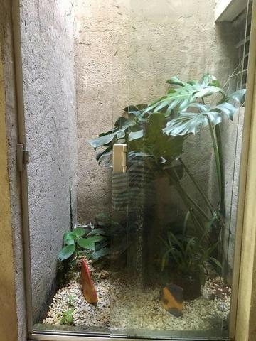Sítio em Silveiras, para venda ou locação (temporadas ou não) com piscina e muito verde - Foto 8