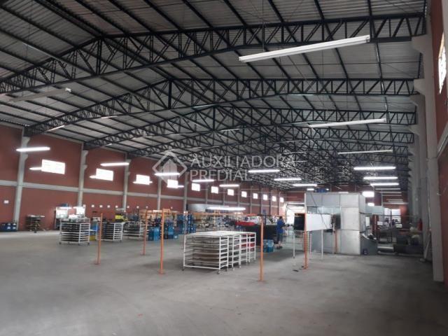 Galpão/depósito/armazém para alugar em Distrito industrial, Cachoeirinha cod:282175 - Foto 5