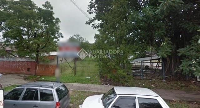 Terreno para alugar em Camaquã, Porto alegre cod:233327 - Foto 3