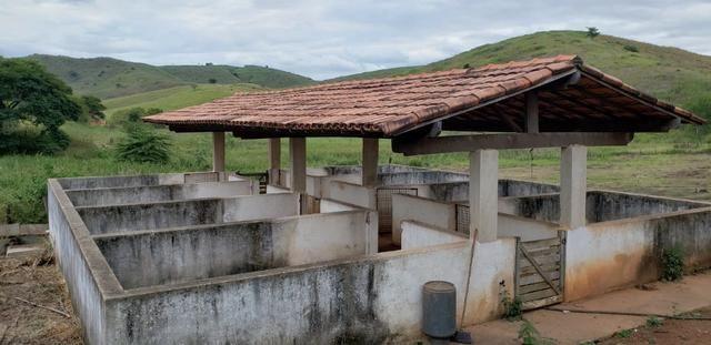 Fazenda 12 alqueires em Governador Valadares/MG - Foto 7