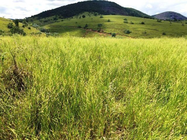 Fazenda 1001 hectares próximo a Teófilo Otoni/MG - Foto 8