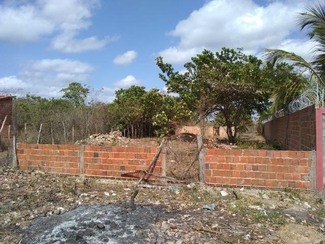 Terreno na baixa da carnaúba no km16 Parnaíba PI