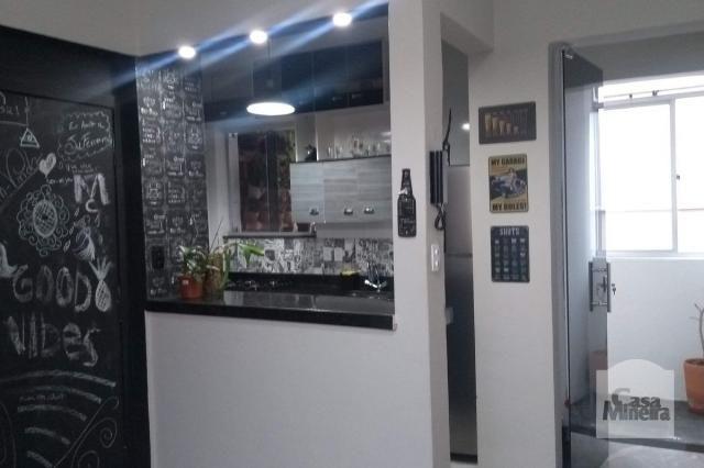 Apartamento à venda com 2 dormitórios em Alto barroca, Belo horizonte cod:257722 - Foto 6