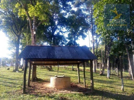 CH0386 - Chácara à venda, 6050 m² por R$ 130.000 - Zona Rural - Quitandinha/PR - Foto 6