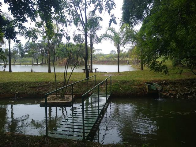 Chácara com lagos e pomar - Foto 5