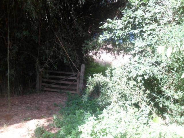 226B/Fazendinha de 15 ha com terras extraordinárias - grande oportunidade - Foto 9