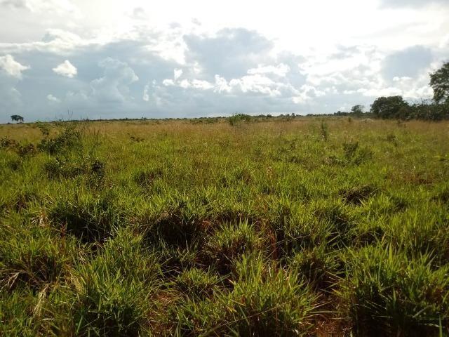 Fazenda de 784,77 hectares ha 140 km de Cuiabá em Rosário Oeste MT - Foto 5