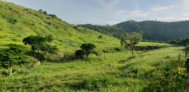 Fazenda 20 alqueires em São Jose Safira / MG - Foto 2