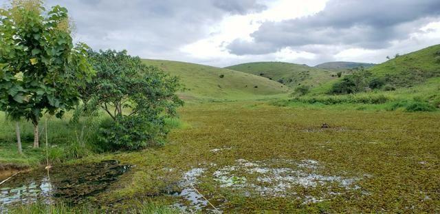 Fazenda 12 alqueires em Governador Valadares/MG - Foto 11