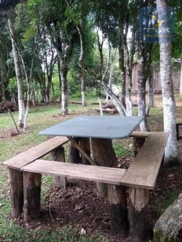 CH0386 - Chácara à venda, 6050 m² por R$ 130.000 - Zona Rural - Quitandinha/PR - Foto 10