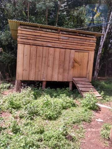 CH0386 - Chácara à venda, 6050 m² por R$ 130.000 - Zona Rural - Quitandinha/PR - Foto 9