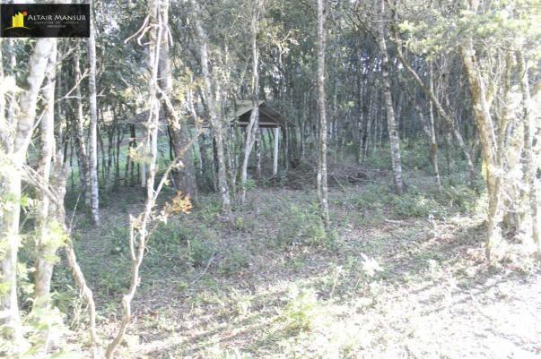 Terreno para Venda em Lagoa Tijucas do Sul-PR - Foto 9