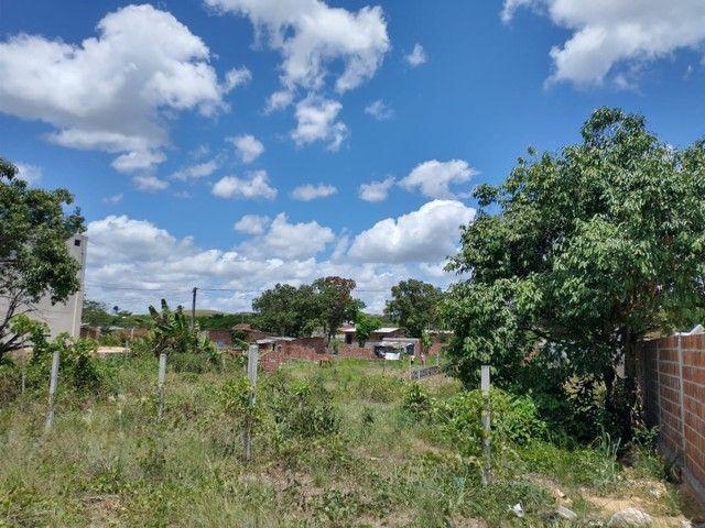 Terreno na Br 408 - Foto 6