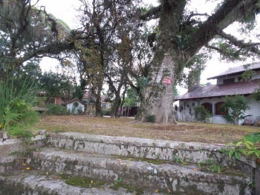 Casa à venda com 3 dormitórios em Ipanema, Porto alegre cod:364000 - Foto 2