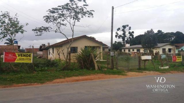 Terreno à venda, 1062 m² por r$ 450.000,00 - borda do campo - são josé dos pinhais/pr - Foto 2