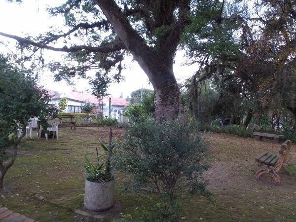 Casa à venda com 3 dormitórios em Ipanema, Porto alegre cod:364000 - Foto 6