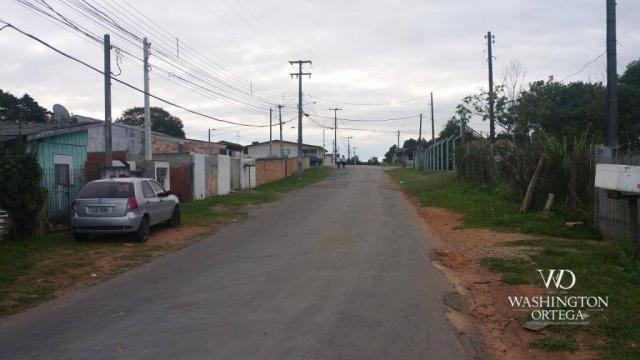 Terreno à venda, 1062 m² por r$ 450.000,00 - borda do campo - são josé dos pinhais/pr - Foto 13