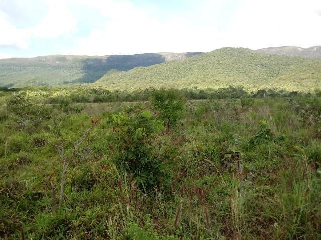 Fazenda de 784,77 hectares ha 140 km de Cuiabá em Rosário Oeste MT - Foto 13