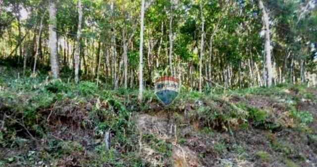 Terreno residencial à venda, Fazenda Boa Fé, Teresópolis. - Foto 14