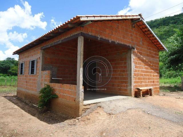 Fazenda 200 hectares na beirada br 070 - Foto 13