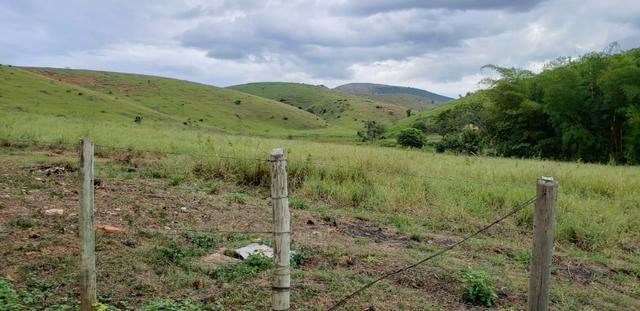 Fazenda 12 alqueires em Governador Valadares/MG - Foto 2