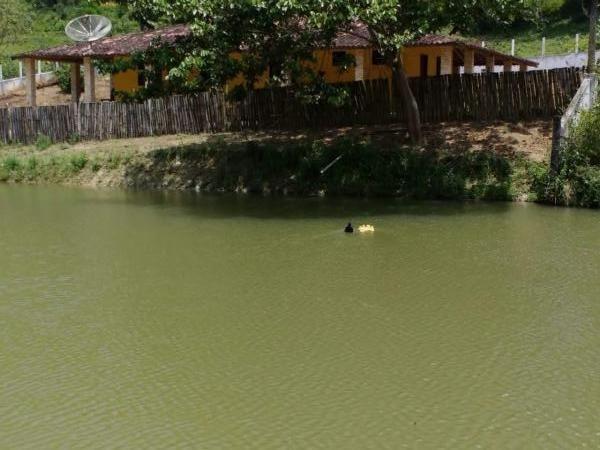 Fazenda para venda em maraial, maraial - Foto 5