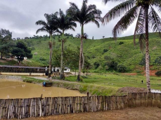 Fazenda para venda em maraial, maraial - Foto 8