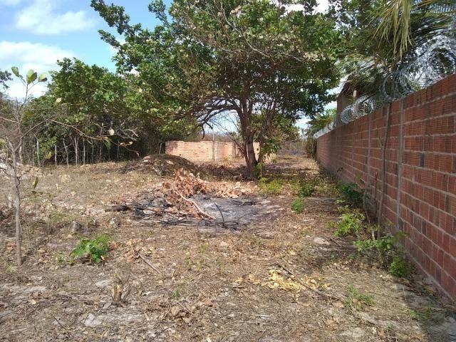 Terreno na baixa da carnaúba no km16 Parnaíba PI - Foto 2