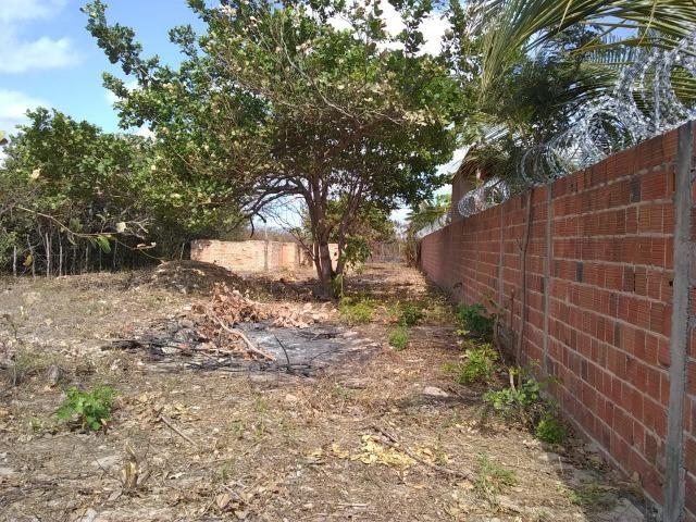 Terreno na baixa da carnaúba no km16 Parnaíba PI - Foto 4