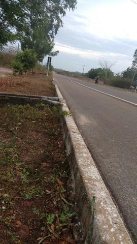 Terreno na baixa da carnaúba no km16 Parnaíba PI - Foto 3