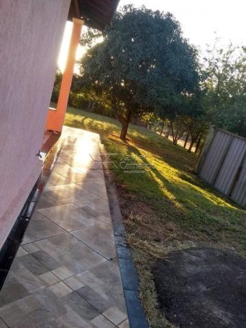 Chácara à venda com 3 dormitórios em Planalto serra verde, Itirapina cod:7810 - Foto 10