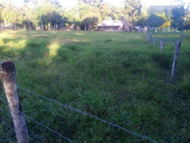 CH0386 - Chácara à venda, 6050 m² por R$ 130.000 - Zona Rural - Quitandinha/PR - Foto 19