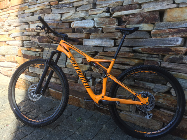 Specialized Epic Pro WC 2017