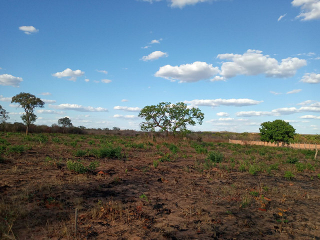 Loteamento Sol do Cerrado  - Foto 3