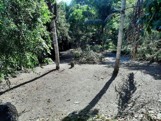 Vendo terreno no Bela Vista ( puraquequara ) - Foto 6