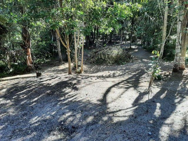 Vendo terreno no Bela Vista ( puraquequara ) - Foto 4