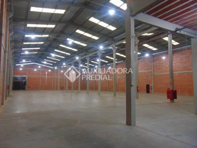 Galpão/depósito/armazém para alugar em Cruzeiro, Cachoeirinha cod:277304 - Foto 4