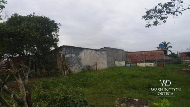Terreno à venda, 1062 m² por r$ 450.000,00 - borda do campo - são josé dos pinhais/pr - Foto 11
